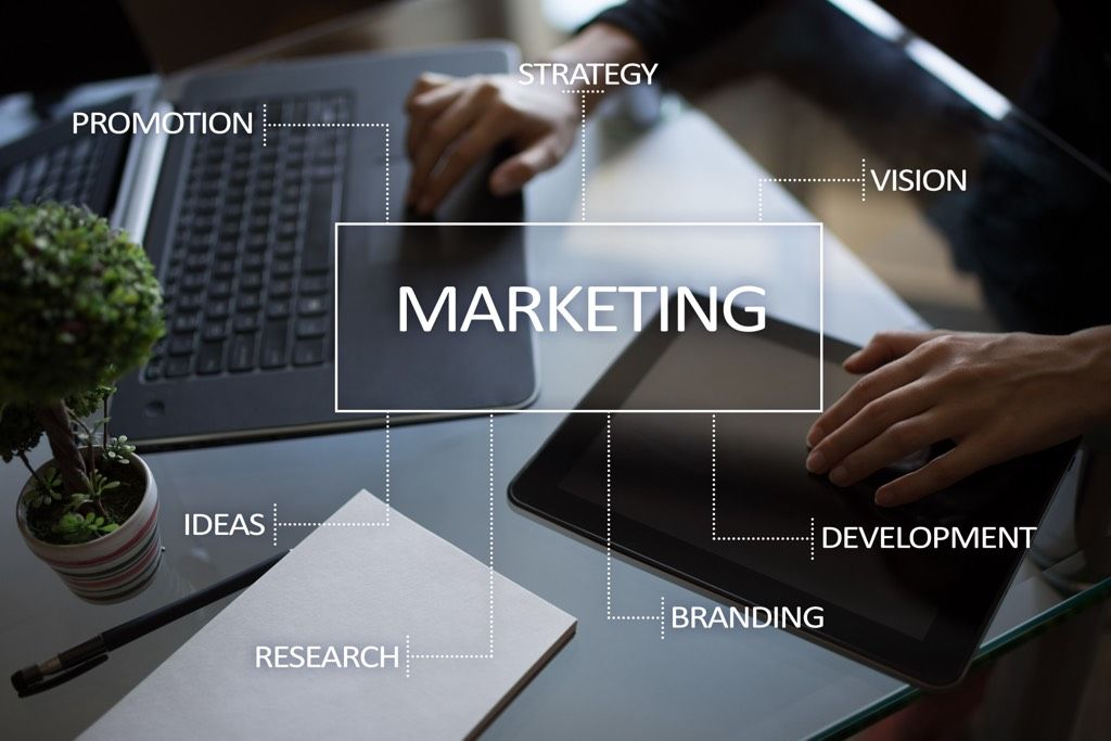 Fractional Chief Marketing Officer establishes a marketing process